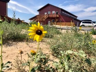 Lily Farm Fresh - barn